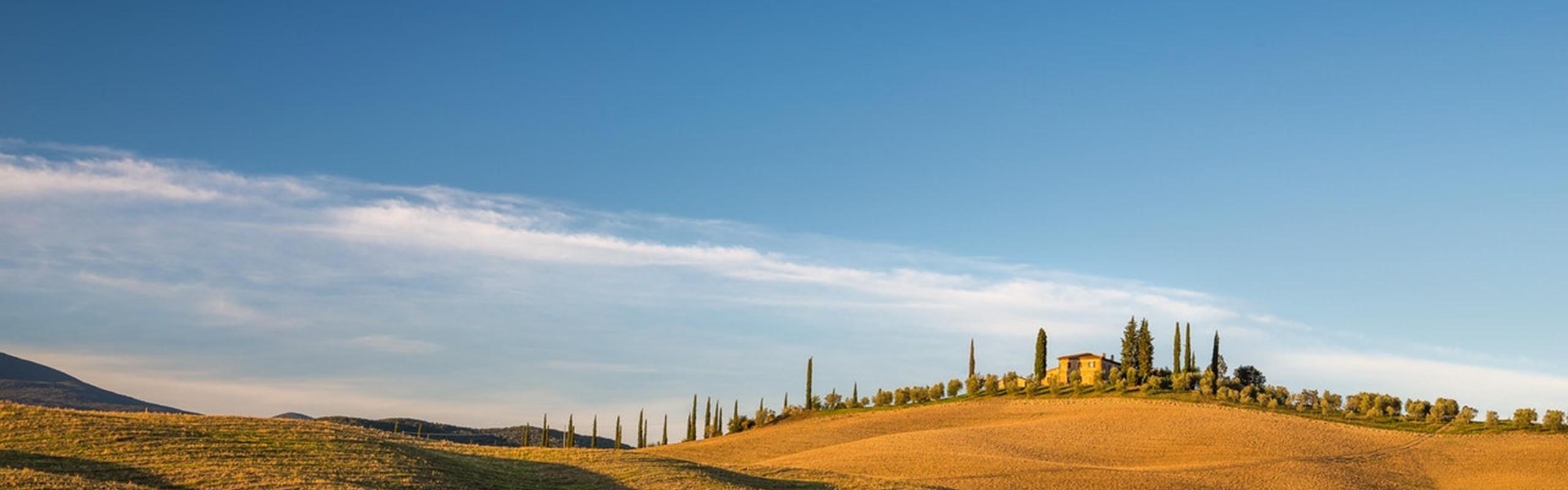 Green -grass -field -under -blue -sky -3591318